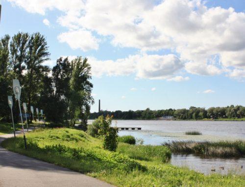 Luitejooks jääb ära ning Võidupüha maraton ja Pärnu Suvejooks toimuvad virtuaalsena